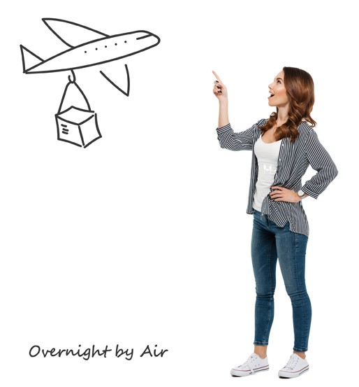 Sending parcel by courier overnight delivery by air